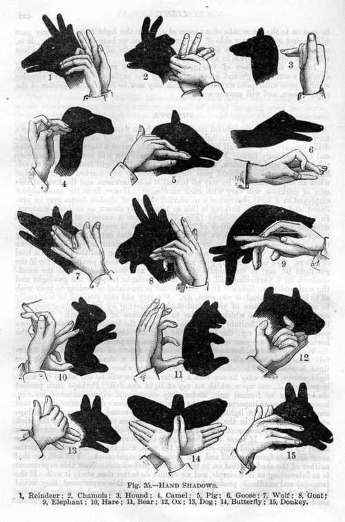 How to Make Hand Shadow Puppets