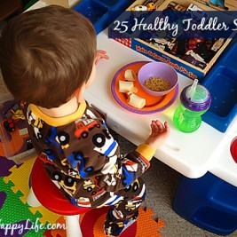 Healthy Snacks for Toddlers - Toddler Snack Ideas