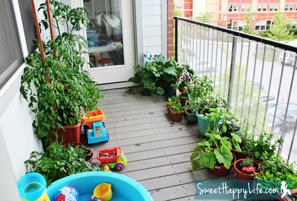 Our Snacking Garden