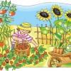 Farmer Joe Lyrics and Song | Owen Duggan