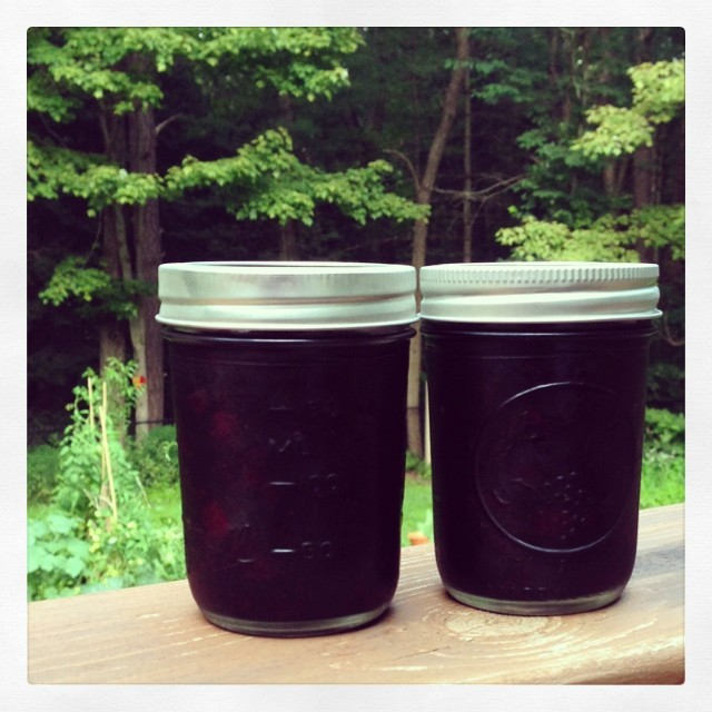 Canned my first jars of blueberry-maple jam today! If you're looking for a stellar beginner book I'm loving